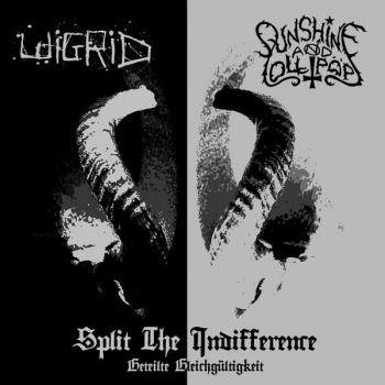 Wigrid / Sunshine & Lollipops - Split the Indifference (Geteilte Gleichgültigkeit)